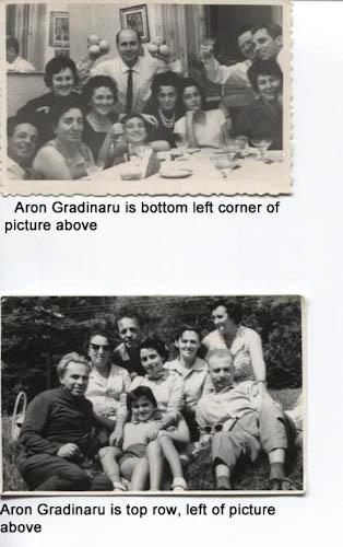 Aron Ghertner/Gradinaru
