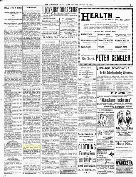 News-TE-GA_DA_NE.1895_08_11_0007